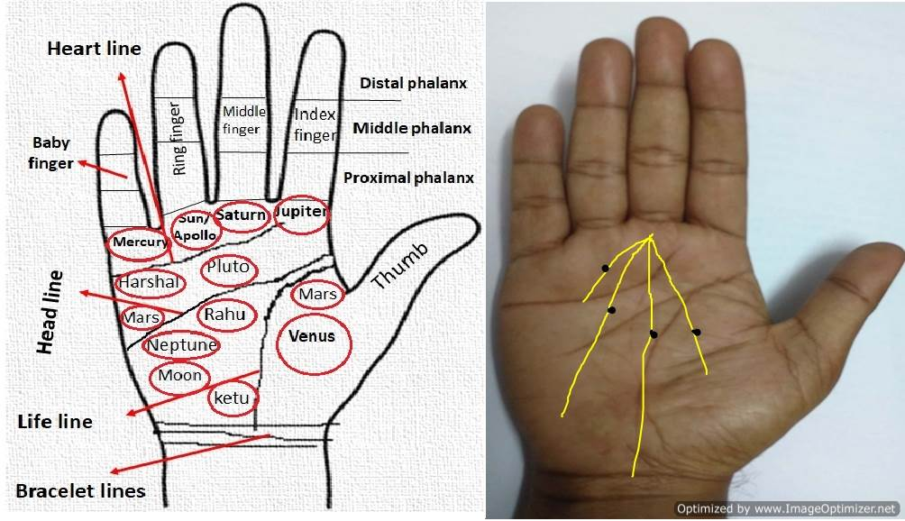 mole on right hand palm astrology